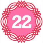 число силы рождения 22