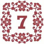 число вызова 7
