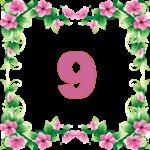 число кармического урока 9