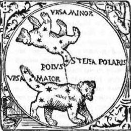 Полярная звезда хвост Медведицы