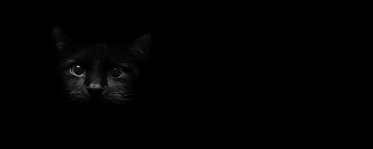 Чёрный цвет психология