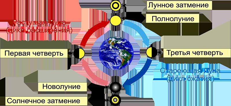 смена фаз луны в 2016 году термобелье Glissade отличаются