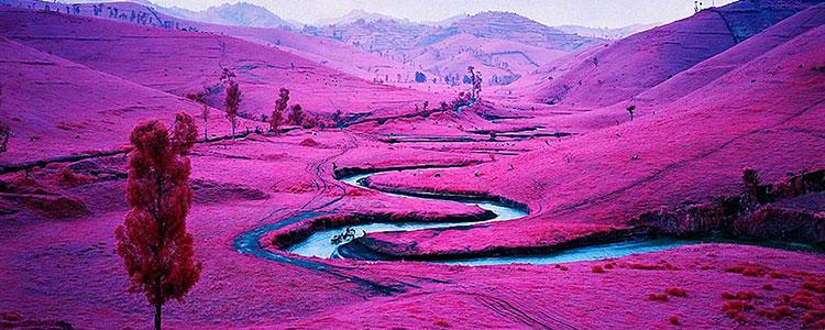 Пурпурный цвет психология