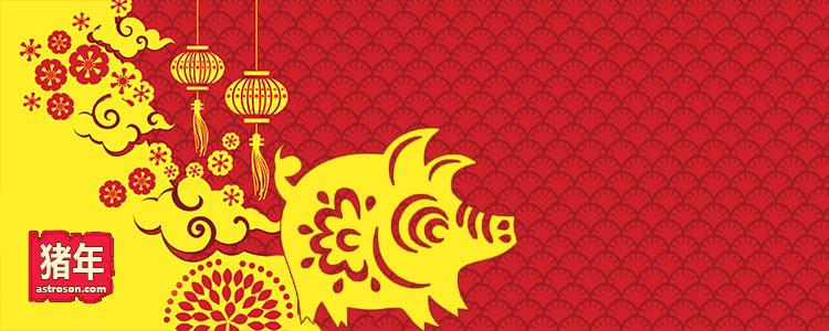 Восточный гороскоп год Свиньи
