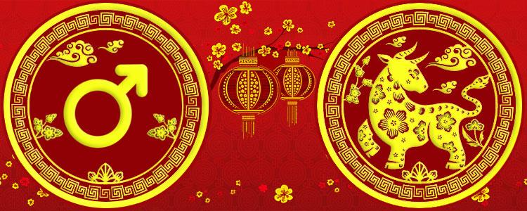 Мужчина Бык - Китайский гороскоп