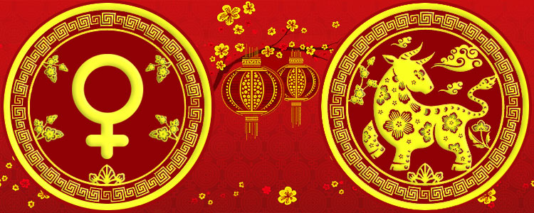 Женщина Бык - Китайский гороскоп