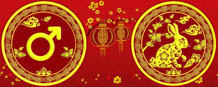 Мужчина Кролик - Китайский гороскоп