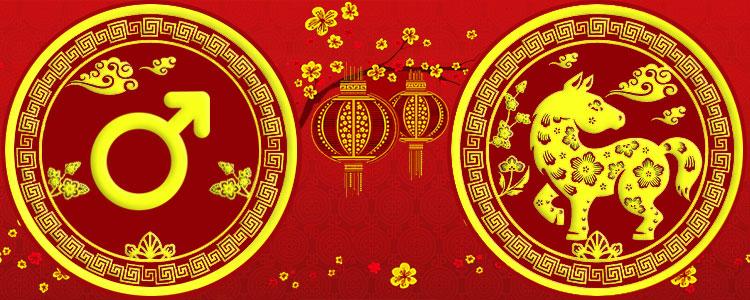 Мужчина Лошадь - Китайский гороскоп