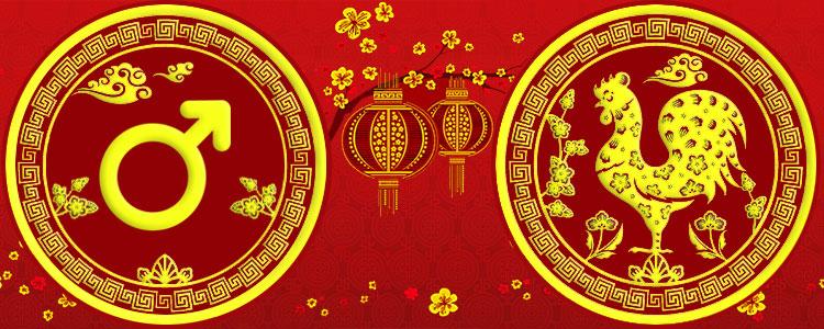 Мужчина Петух - Китайский гороскоп