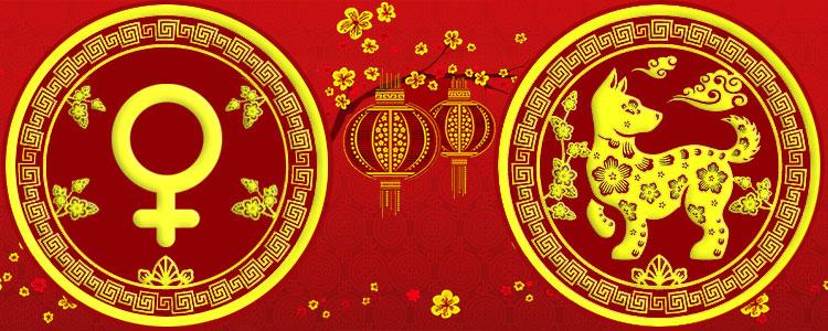 Женщина Собака - Китайский гороскоп