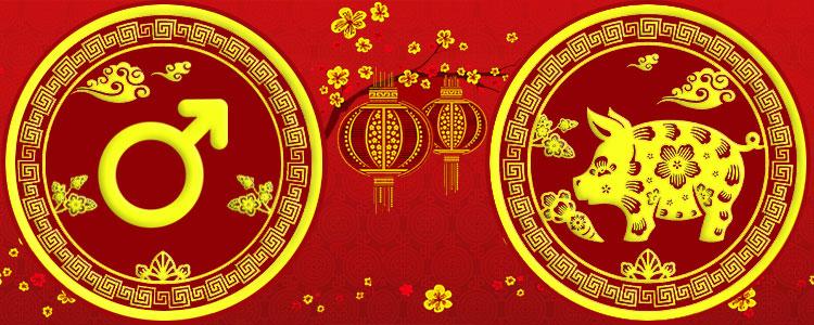 Мужчина Свинья - Китайский гороскоп