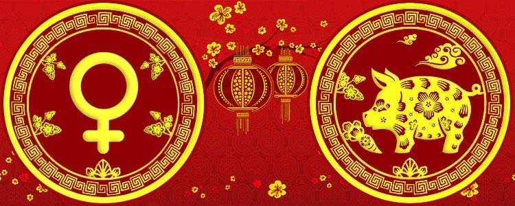 Женщина Свинья - Китайский гороскоп