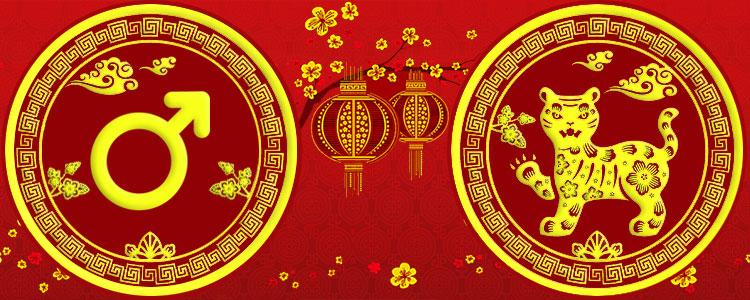 Мужчина Тигр - Китайский гороскоп