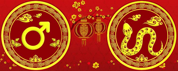 Мужчина Змея - Китайский гороскоп