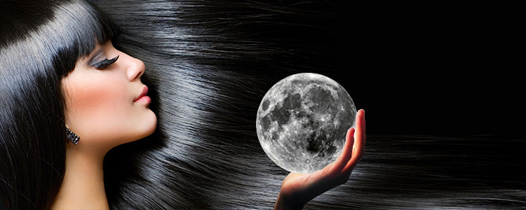 Луна стрижка, причёска и окрашивание волос